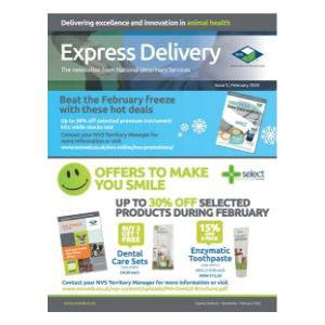 Express-Delivery-February