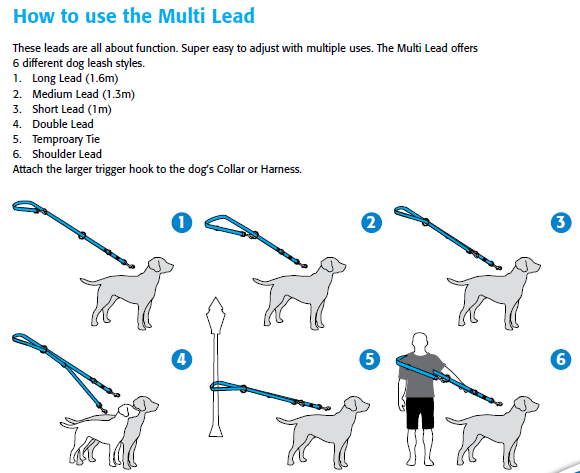 How to use the Multi Lead