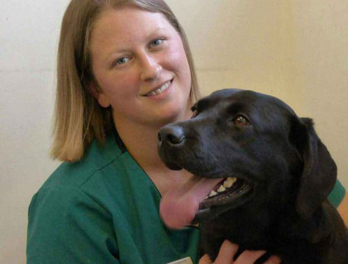 Tara-Evans,-RVN,-Head-of-Sales-at-Vita-Animal-Health,-pictured-with-her-dog.
